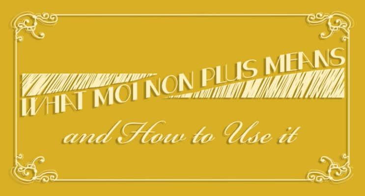 What Moi Non Plus Means and How to Use It